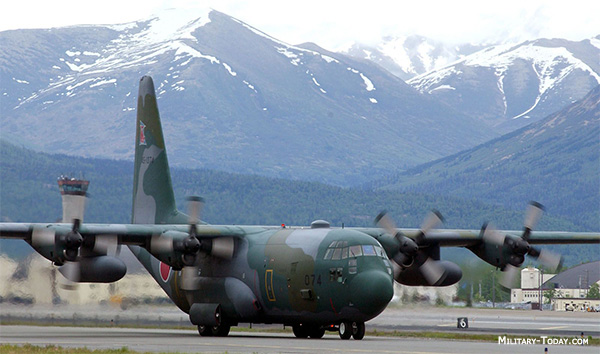 C 130 Military Transport Aircraft C-130 Hercules