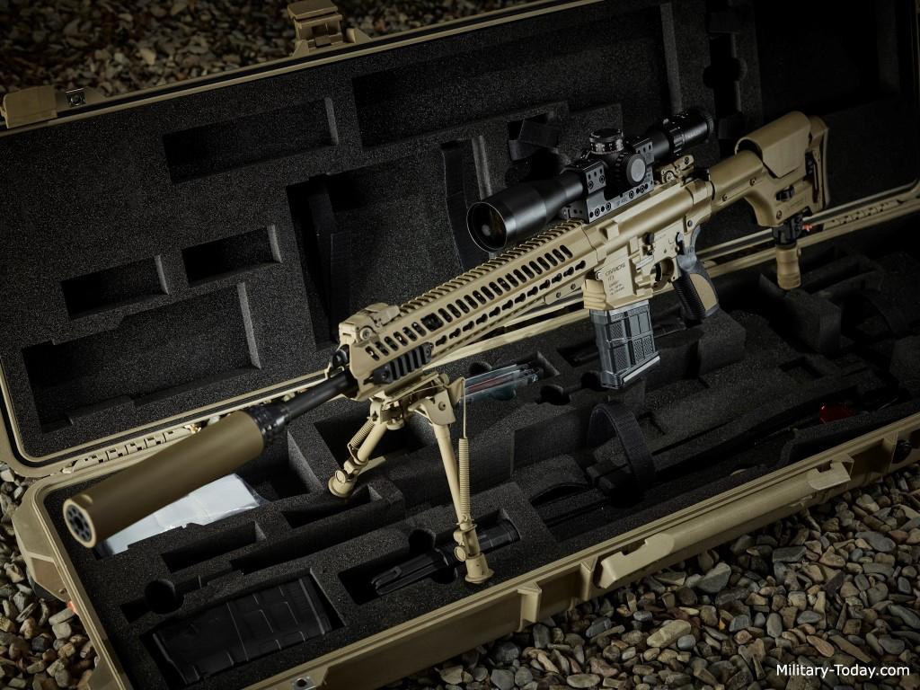 CAR 817 Automatic rifle