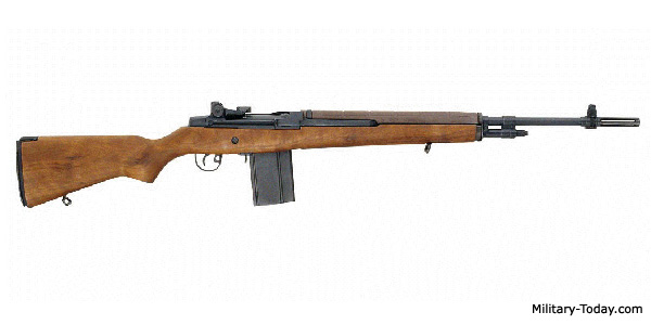 Field strip springfield m1a