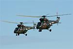 W-3W Sokol helicopters
