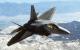 Lockheed Martin / Boeing F-22 Raptor
