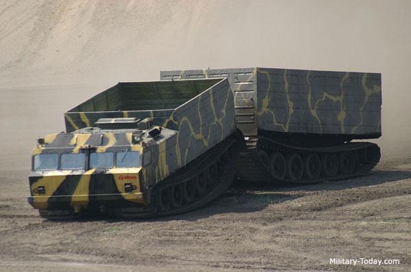 DT-30P Vityaz