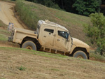 Navistar International MXT