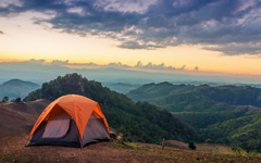 Survival tips for travelers