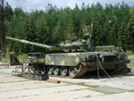 Arena active protection system